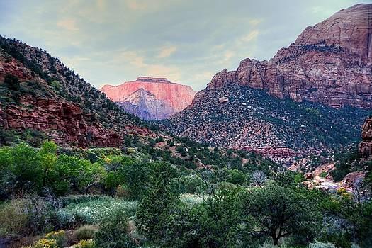 Zion National Park by Charlotte Schafer
