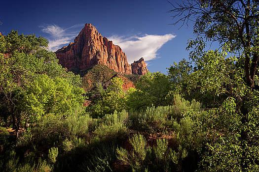 Ricky Barnard - Zion National Park IV