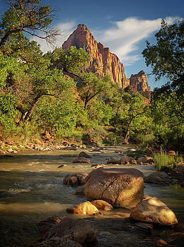 Zion National Park IX by Ricky Barnard