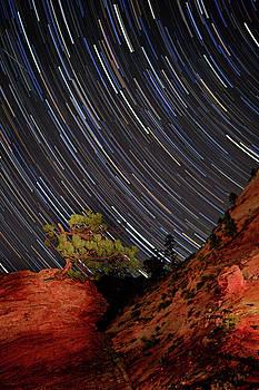 Ralph Nordstrom - Zion Starry Night 2012
