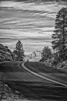 Zion's Road BW by Mitch Johanson
