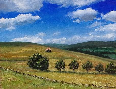 Zlatibor by Darko Topalski