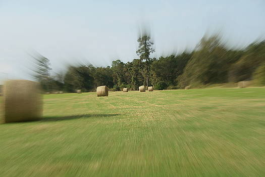 Zoom in the Hay by Danny Jones