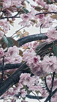 Zoomin Bloomin 2 by Devorah Malek