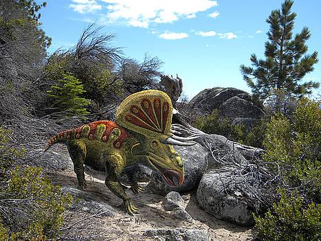 Frank Wilson - Zuniceratops Among Rocks