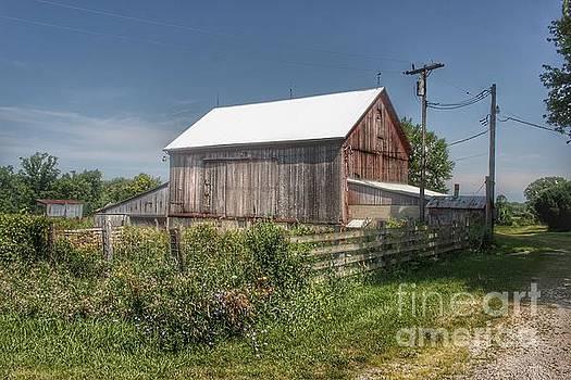 0334 - Castle Road Cow Barn I  by Sheryl L Sutter