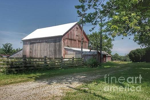 0335 - Castle Road Cow Barn II  by Sheryl L Sutter