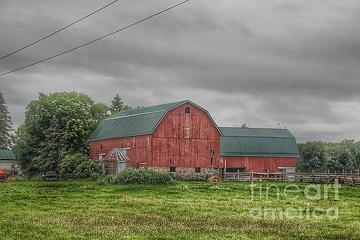 0344 - Clifford Road Red V by Sheryl L Sutter
