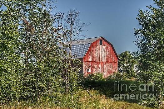 0346 - Columbiaville Red in Summer  by Sheryl L Sutter