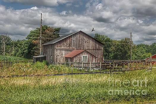 0355 - Millington Roads Grey Horse Barn by Sheryl L Sutter