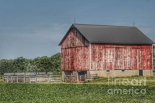 0360 - North Lake Pleasant Red Cow Barn  by Sheryl L Sutter