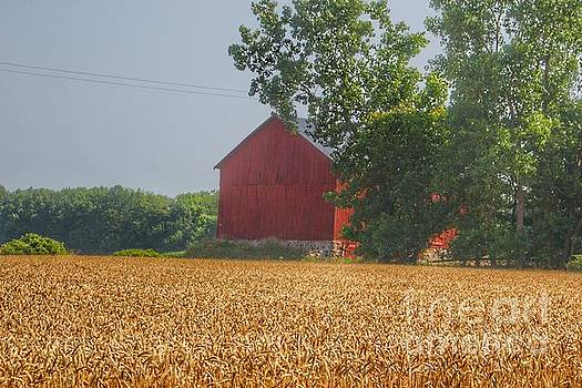 0374 - Tubspring Road's Hidden Red by Sheryl L Sutter