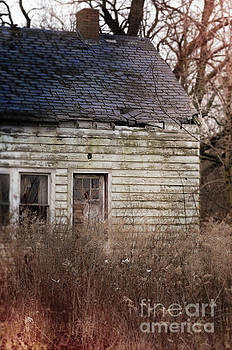 Abandoned Cabin by Jill Battaglia