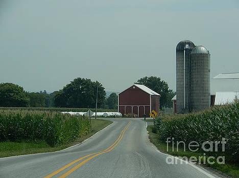 Christine Clark - Amish Homestead Ahead