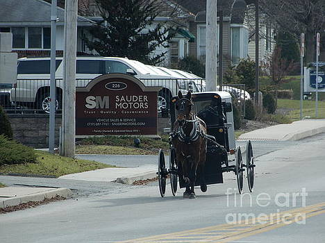 Christine Clark - An Amish Buggy in December