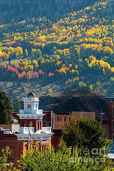 Autumn Aspen Leaves of Victor Colorado by Steve Krull