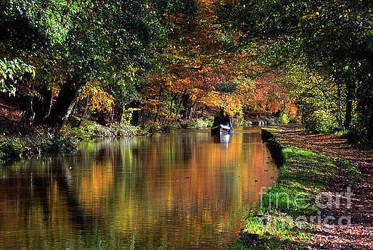 Mariusz Talarek - Autumn in Low Bradley