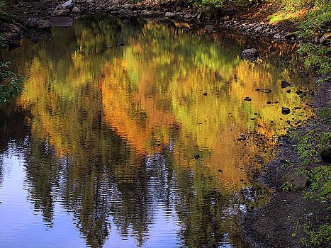 Susan Burger - Autumn Reflections