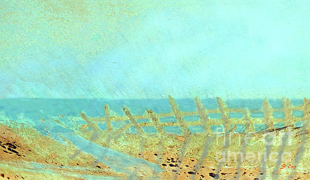 Sharon Williams Eng - Beach Fence Shadows 300
