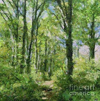 Birch Forest by Dragica Micki Fortuna