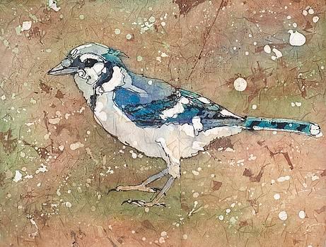 Blue Jay by Ruth Kamenev