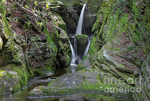 Blue Ridge Waterfall by Norma Brandsberg