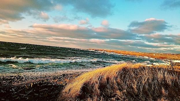 Bonavista Bay by Zinvolle Art