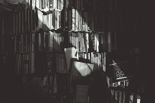 Books by Hyuntae Kim