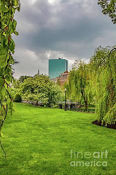 Boston, You're My Home by Elizabeth Dow