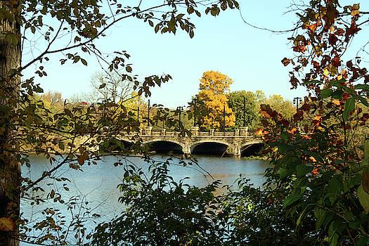 Bridge in Autumn by Ellen Tully