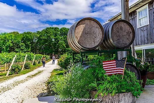Cape may winery  by Alan Rizzolo