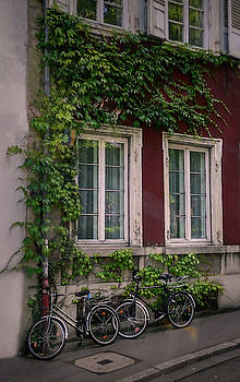 City of Bicycles - Heidelberg, Germany 2 by Mary Lynn Giacomini