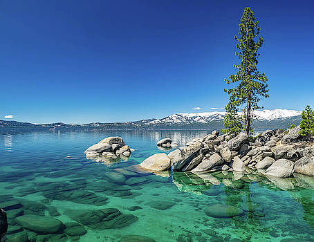 Clear Water by Martin Gollery