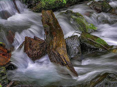 Mike Penney - Columbia gorge creek