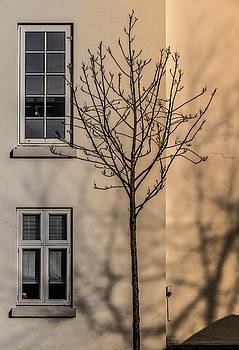 Come To Your Window by Odd Jeppesen