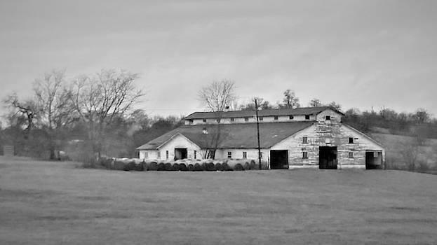Country Barn by Peggy Leyva Conley