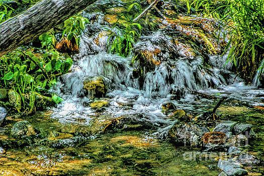 Creek Waterfall by Joe Lach