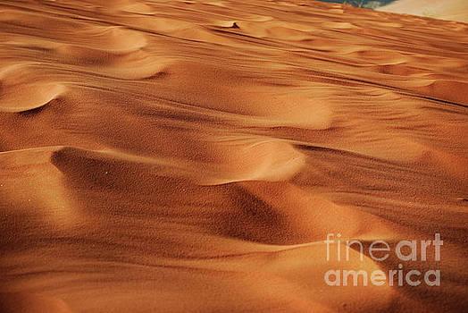 Desert Sand by Jelena Jovanovic