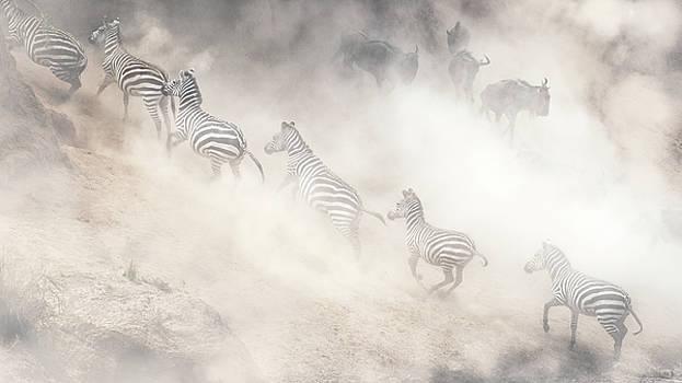Dramatic Dusty Great Migration in Kenya by Susan Schmitz