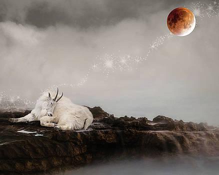 Dreaming by Rebecca Cozart