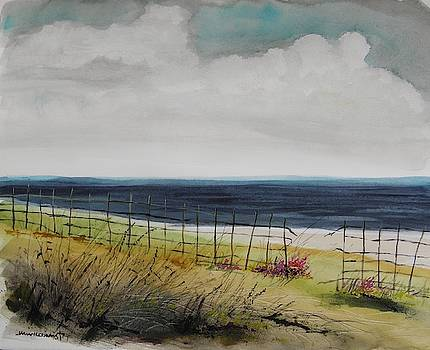 Dune Fence by John Williams