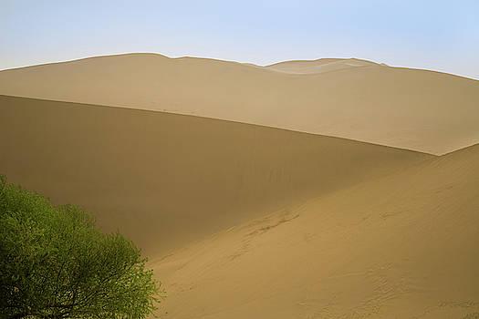 Dunes at Dunhuang Gansu China by Adam Rainoff