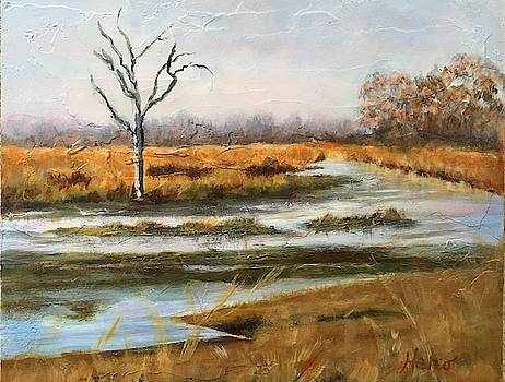 Early Spring on the Marsh by Marcia Hero