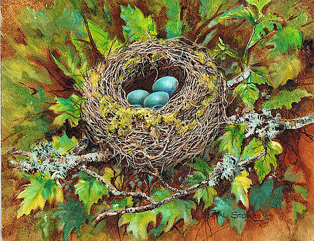 Eggspecting by Val Stokes