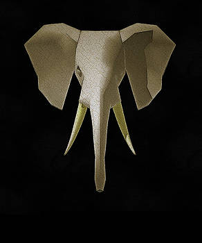 Elephant by Robert Bissett