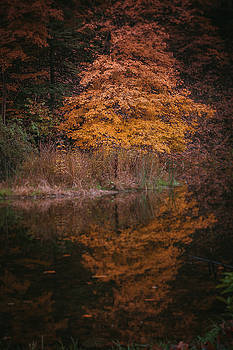 Fall Reflections by Johnathan Erickson