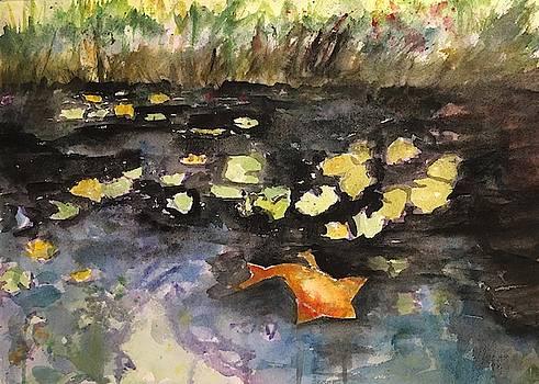 Fish Pond by Marita McVeigh