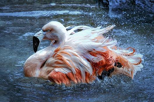 Flamingo by Savannah Gibbs