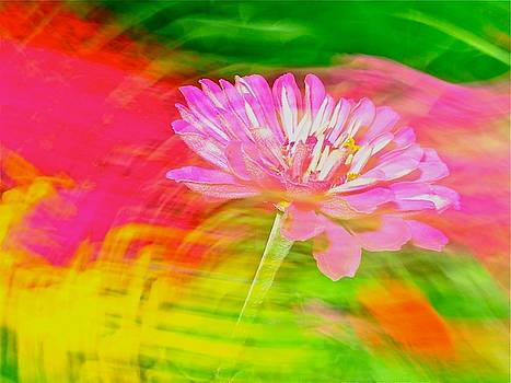 Flower Abstract by Jeffrey PERKINS