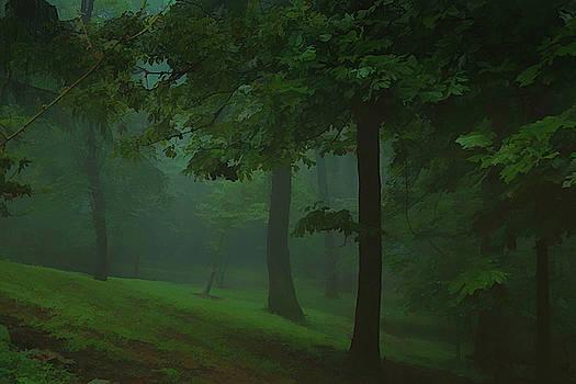 Foggy Morning by Ernie Echols